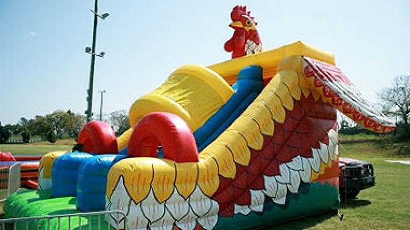 Chook Slide Ride