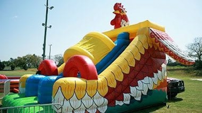 Chook Slide Ride