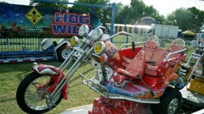Wild Hog Ride